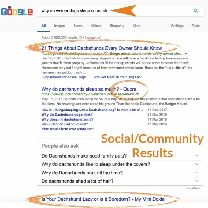 local seo search intent question