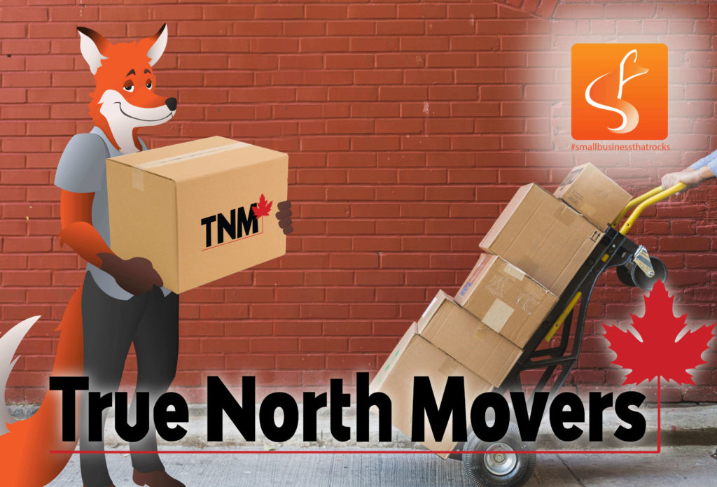 true north movers with slyfox mascot holding boxes with True North Movers logo on the bottom and the Sly Fox In the top right.
