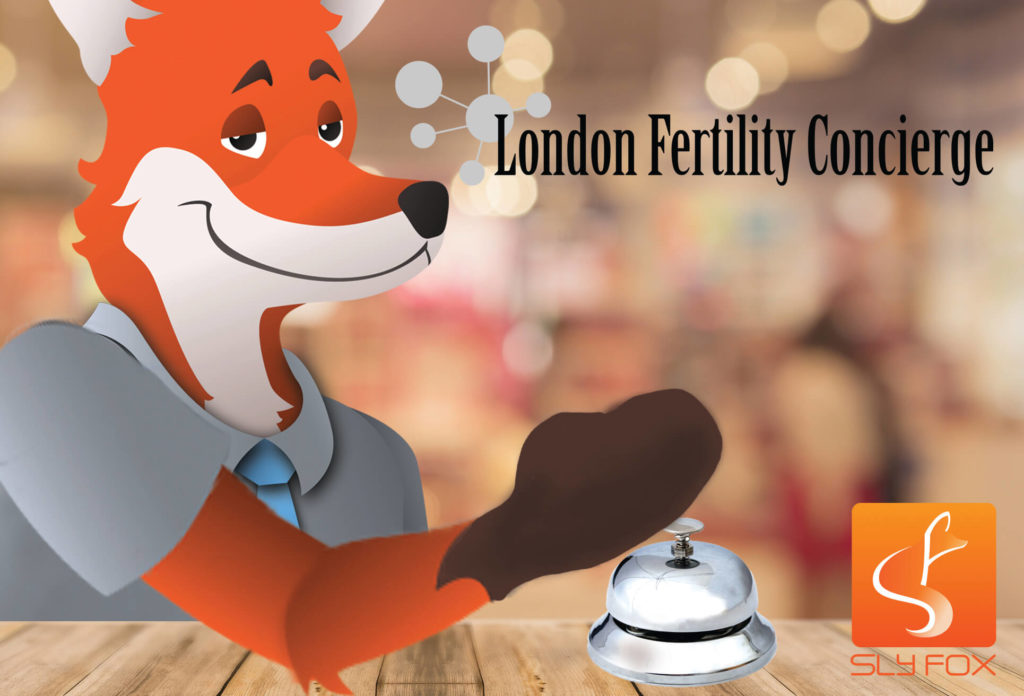 slyfox blog fertility concierge image - SlyFox Web Design and Marketing
