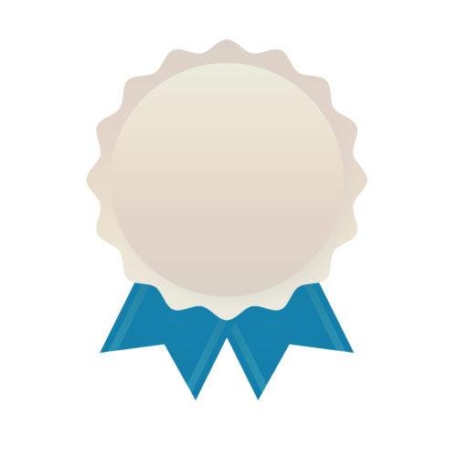 silver award ribbon - SlyFox Web Design and Marketing